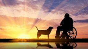 Disability Planning in Richmond, VA
